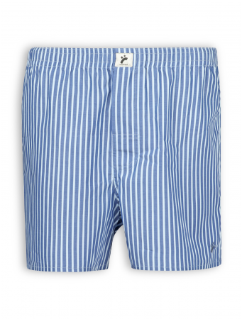 Boxershort von recolution in blue/white striped