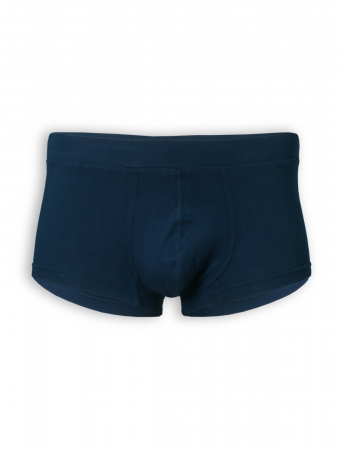 Classic-Shorts von Living Crafts in navy