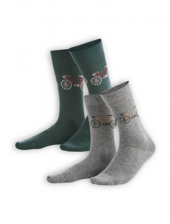 Socken Falk (2er Pack) von Living Crafts in dark forest/stone grey melange